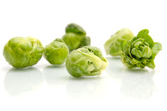 Brussels sprouts cabbage Stock Image