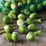 Brussels sprouts cabbage Royalty Free Stock Images