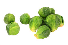 Brussels sprouts (Cabbage) Stock Photography