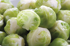 Brussels sprouts, close-up Stock Photography