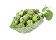 Brussels sprouts compromised Royalty Free Stock Images
