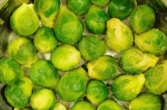 Brussels Sprouts in a Cooking Pot, Detail, horizontal Stock Photography