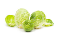 Brussels sprouts isolated Royalty Free Stock Images