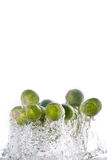 Brussels sprouts jumping out of the water Stock Photography