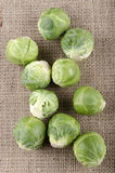 Brussels sprouts on a jute cloth Royalty Free Stock Images
