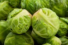 Brussels sprouts. Macro closeup detail royalty free stock photo