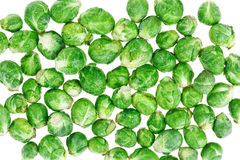 Brussels sprouts macro food background Royalty Free Stock Image