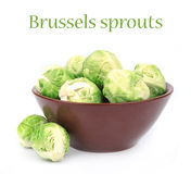 Brussels sprouts in plate Royalty Free Stock Images