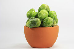 Brussels sprouts in a pot. Fresh green brussels sprouts in a pot Stock Image