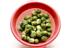 Brussels sprouts in the sieve Royalty Free Stock Photos