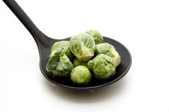 Brussels sprouts in the soup ladle Stock Image