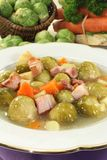 Brussels sprouts stew Stock Photos
