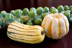 Brussels Sprouts Sweet Dumpling, Delicata Squash Royalty Free Stock Photography