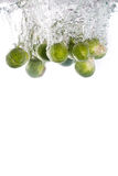 Brussels sprouts water falling into water Royalty Free Stock Images
