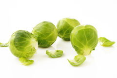 Brussels sprouts on white Royalty Free Stock Image