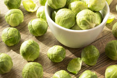 Brussels sprouts. In a white bowl an scattered on wooden background Stock Image