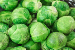 Brussels sprouts Stock Photography