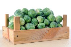 Brussels sprouts in wooden crate. Over white background Royalty Free Stock Photography