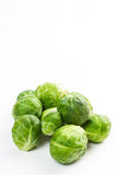 Brussles sprouts isolated on white. Raw and uncooked brussels sprouts isolated on white stock photos