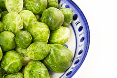 Brussles sprouts. Loads of raw brussels sprouts in a white and blue bowl royalty free stock photos