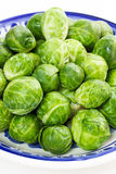 Brussles sprouts. Loads of raw brussels sprouts in a white and blue bowl stock photo