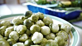 Brusslesprouts cooked and ready Stock Image
