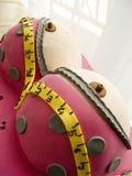 Brust-Geburtstagskuchen des Gags weiblicher Stockfoto