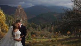 Brustbild der jungen attraktiven Jungvermählten, die am Hintergrund der schönen Berge im Herbst umarmen stock footage