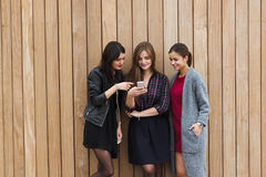 Brustbild von herrliche Damen kleidete in der modischen Kleidung unter Verwendung des Zelltelefons gegen Kopienraumbereichshinter stockfotos