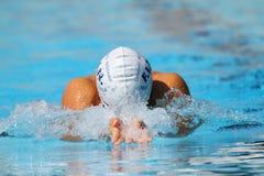 Brustschwimmen: Alpe Adria Sommer-Spiele 2010 Lizenzfreie Stockfotos