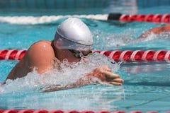Brustschwimmenlaufleine Stockfotos