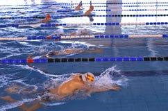 Brustschwimmenmeisterschaft Lizenzfreie Stockfotografie