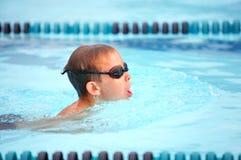 Brustschwimmenrennen Stockbilder