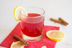 Brusznicowy napój z cytryną Obraz Stock
