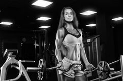 Brutal athletic woman pumping up muscles with dumbbells Royalty Free Stock Images