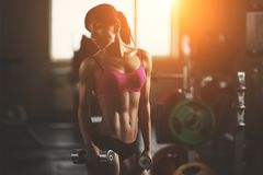 Brutal athletic woman pumping up muscles with. Dumbbells. Brunette sexy fitness girl in pink sport wear with perfect body in the gym posing before training set Royalty Free Stock Photos