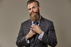Brutal beard man Royalty Free Stock Image