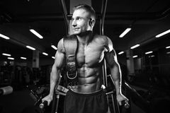 Brutal bodybuilder powerful training arms, pectorals and shoulde Royalty Free Stock Photography
