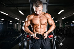 Brutal bodybuilder powerful training arms, pectorals and shoulde Royalty Free Stock Photo