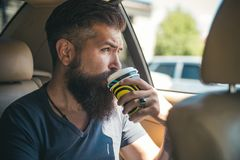 Brutal caucasian hipster with moustache. Bearded man. Male barber care. Mature hipster with beard. Coffee in car royalty free stock image