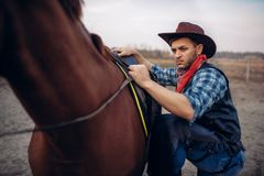 Brutal cowboy climbs on horseback on texas ranch royalty free stock image
