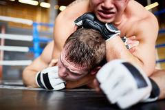 Brutal Fight in Boxing Ring Stock Photos