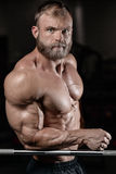 Brutal muscular man with beard unshaven fitness model healthcare. Brutal muscular man with beard train in the gym unshaven fitness model healthcare lifestyle Stock Image