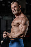 Brutal muscular man with beard unshaven fitness model healthcare. Brutal muscular man with beard train in the gym unshaven fitness model healthcare lifestyle Stock Images