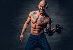 Shirtless shaved head, muscular male with tattoos on his chest a. Brutal shirtless shaved head, muscular male with tattoos on his chest and arms holds dumbbell stock images
