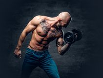 Shirtless shaved head, muscular male with tattoos on his chest a. Brutal shirtless shaved head, muscular male with tattoos on his chest and arms holds dumbbell stock photos
