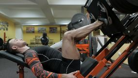 Brutal strong bodybuilder pumping up muscles, doing exercises in gym.  stock video footage