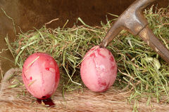 Brutal violence against eggs Stock Image