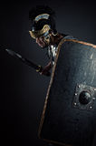 Brutal warrior with sword and shield. Isolated on gray background Royalty Free Stock Photos