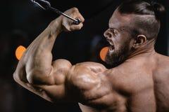 Brutalnego silnego bodybuilder sportowi mężczyzna pompuje up mięśnie z d Obraz Stock